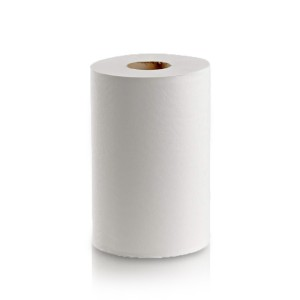 Replacement roll paper small