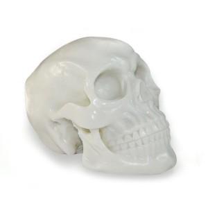 Cranio tatuable silicone per decorazione di studi