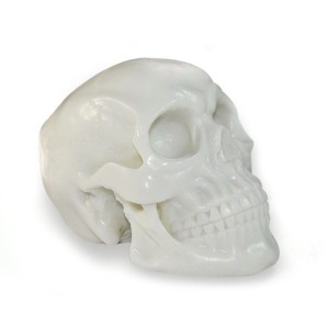 Skull tatuable silicone for decoration of studies